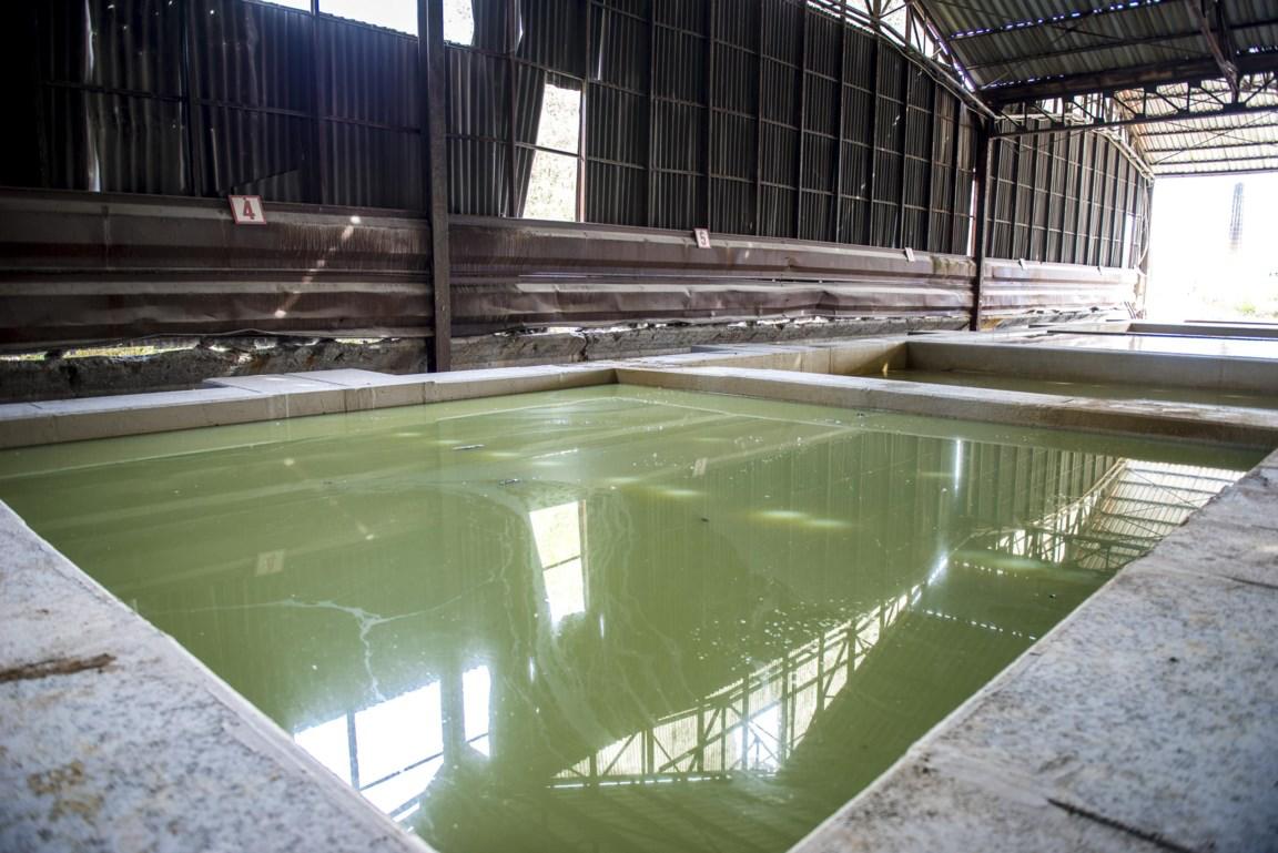 RDL maakt van bentoniet een oplossing voor landbouw